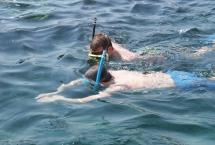 snorkeling tours in bandar khiran